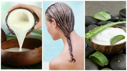 Засіб від випадіння волосся з алое вера та кокосовим молоком ... 53c3963c3502c