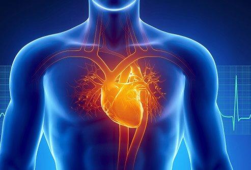 Кардіологи назвали 5 продуктів, які допоможуть поліпшити здоров'я серця