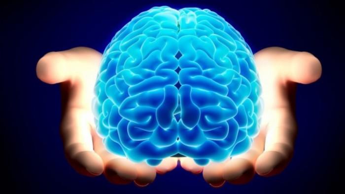 Експерти назвали 7 продуктів, які шкодять нашому мозку