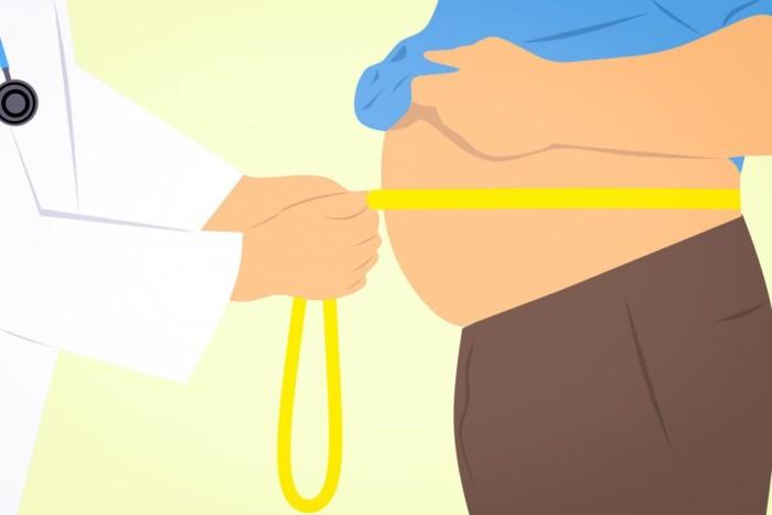 Вчені виявили зв'язок між виробництвом серотоніну, дієтою і ожирінням